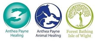 Anthea Payne Healing